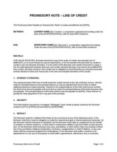 editable promissory note line of credit line of credit promissory note template excel