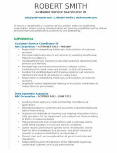 Costum Resume Template For Internal Position Pdf