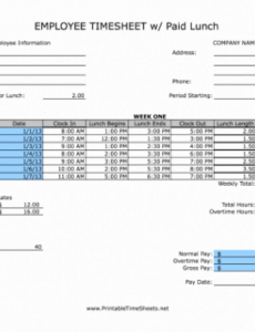 Free Timesheet With Lunch Break Template Doc