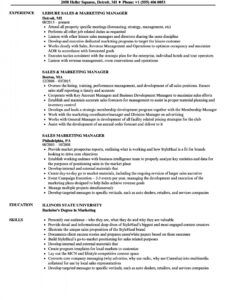 Professional Resume Template For Sales Manager Doc Example