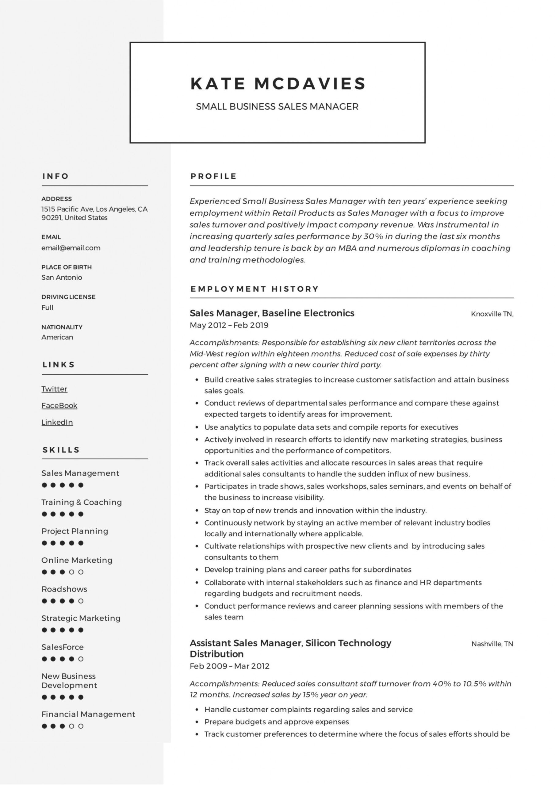 Professional Resume Template For Sales Manager Excel Example