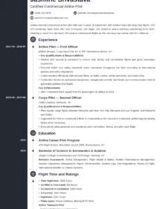 Costum Airline Pilot Resume Template Word Example
