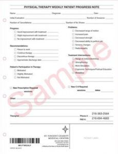 svpod 180 physical therapy weekly patient progress note pain management soap note template word